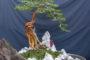 Cách trồng cây sam núi