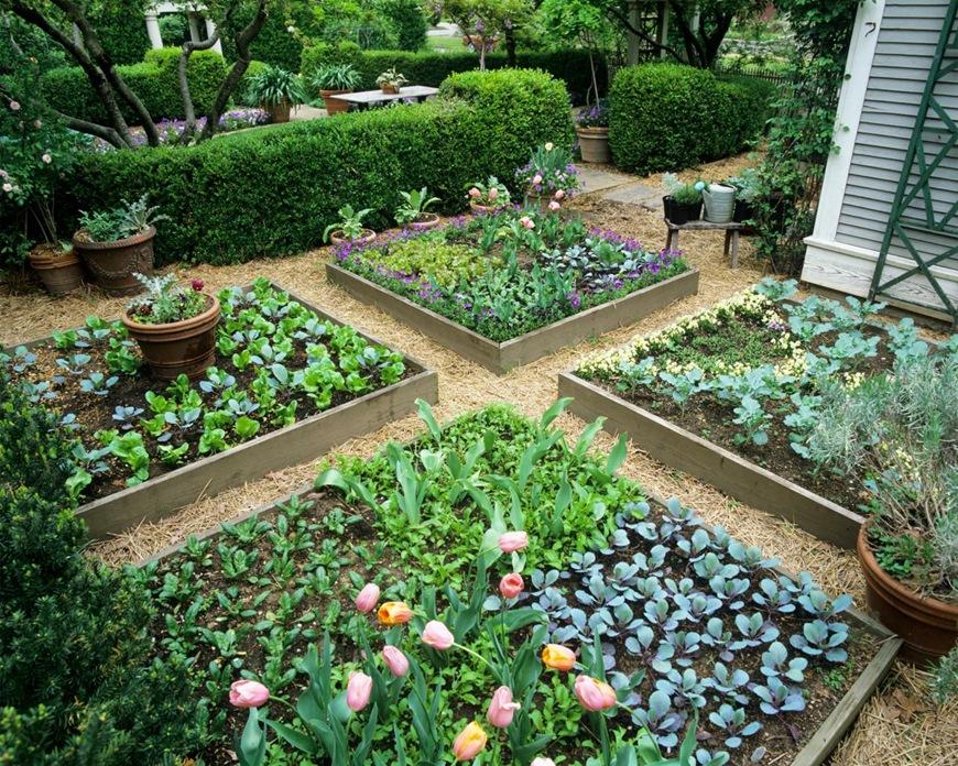 Cách bài trí cho sân vườn nhỏ