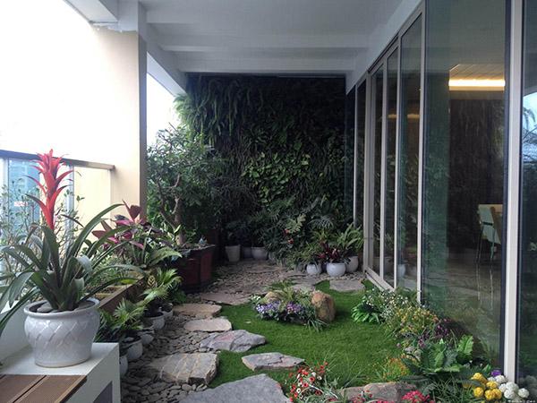 Tuyệt chiệu nổi bật khu vườn thiếu ánh sáng