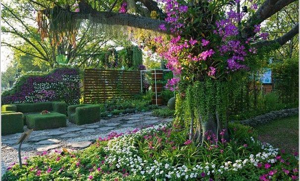 Tạo vẻ đẹp hút mắt cho vườn cây mùa hè