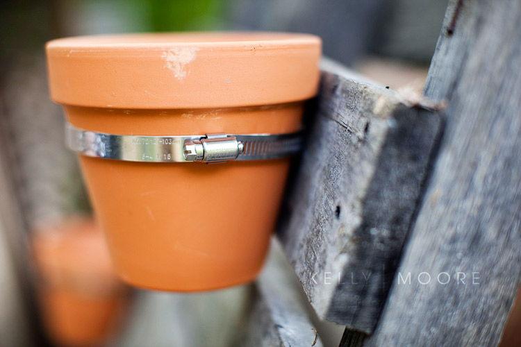 Cách làm vườn treo trong nhà từ gỗ pallet