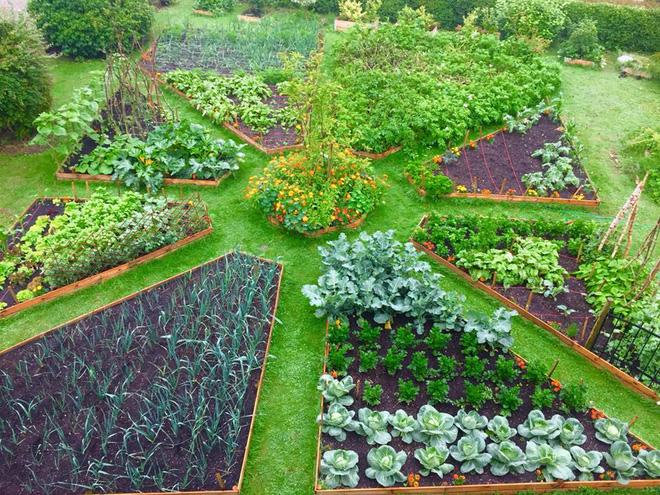 Khám phá khu vườn đẹp như tranh vẽ