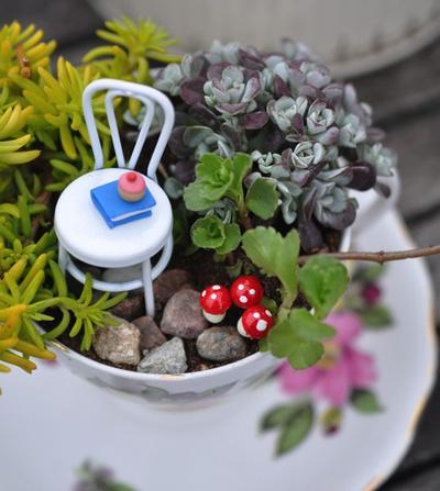 Cách làm khu vườn mini trong tách trà