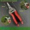 Kéo cắt tỉa thu hoạch P911DQ