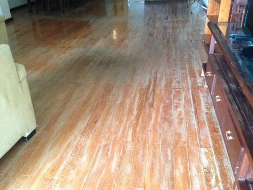 Mẹo ngăn ngừa nấm mốc trên sàn gỗ hiệu quả