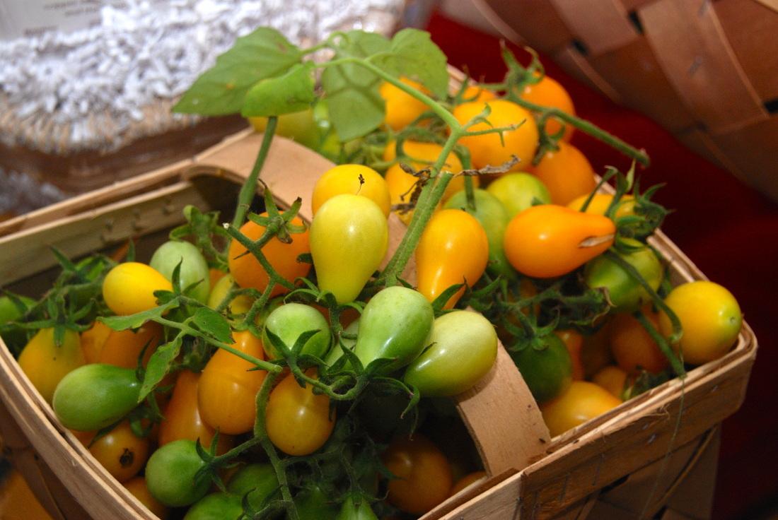 10 loại rau củ quả tí hon cực dễ trồng