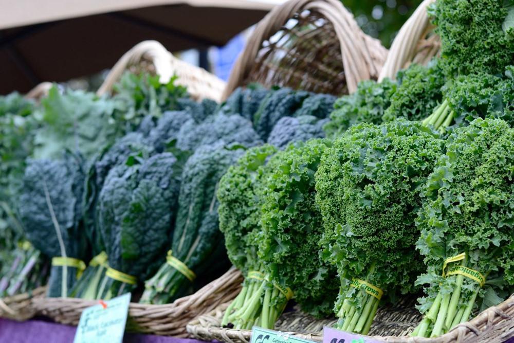 Tự trồng 6 loại rau củ sạch năng suất cao