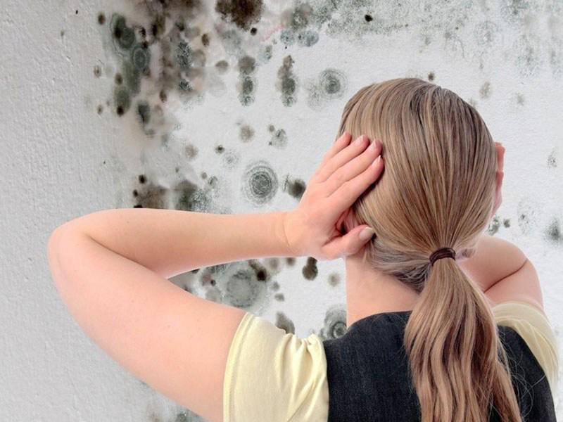 Tẩy bay tường bị nấm mốc