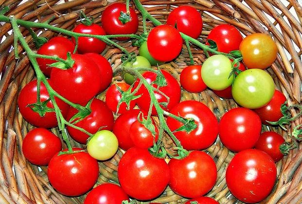 Tự trồng 5 loại rau quả thông dụng cho mọi bữa ăn