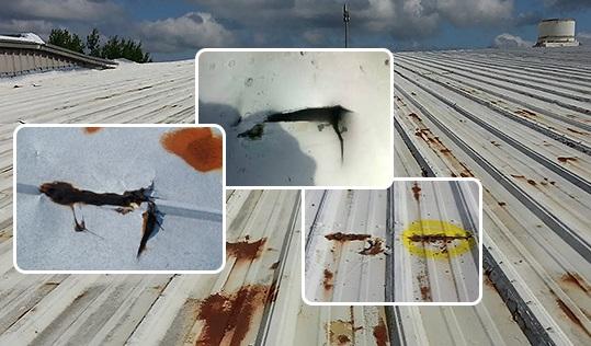 Nguyên nhân và cách sửa mái tôn bị dột đơn giản mà hiệu quả