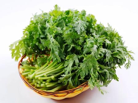 Cách trồng rau cải cúc tần ô tại nhà