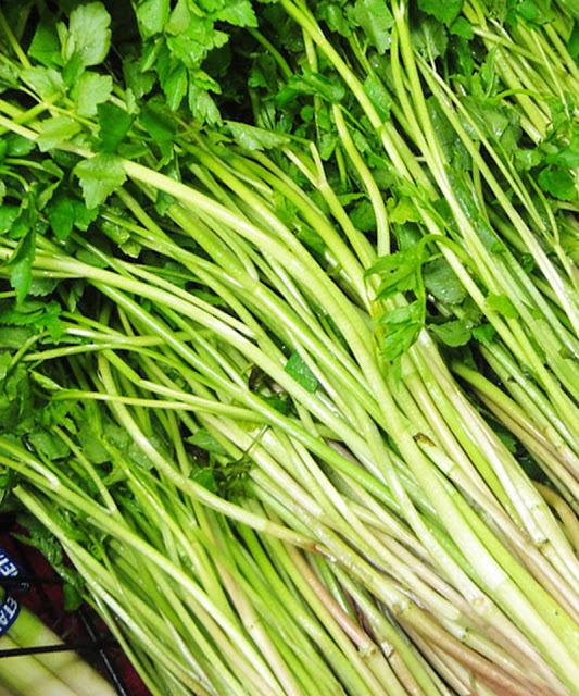 Cách trồng rau cần nước xanh tốt đảm bảo an toàn