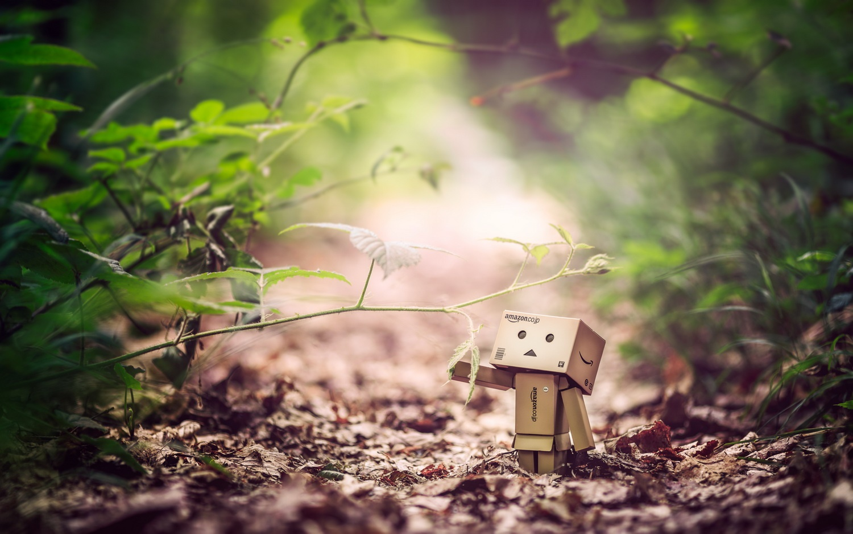 Hướng dẫn cách làm người gỗ Danbo ngộ nghĩnh