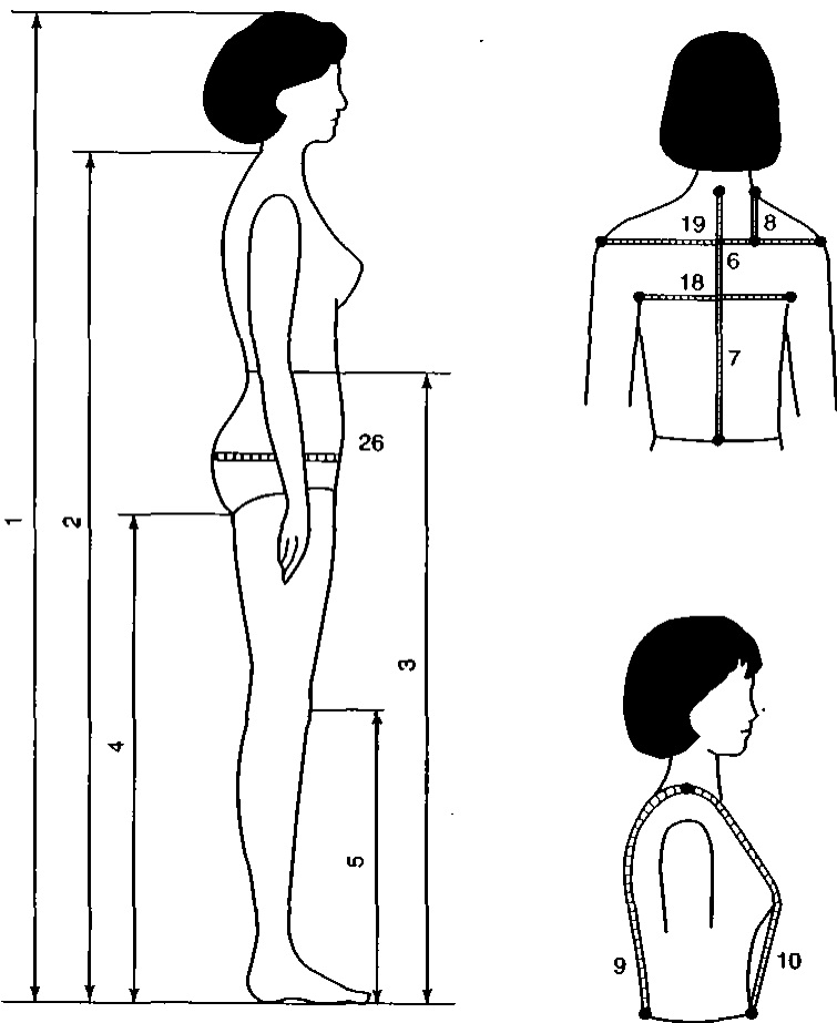 Cách đo kích thước cơ thể