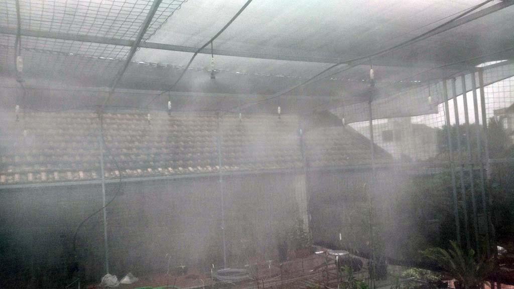 Hệ thống tưới phun sương tại Vườn Lan Thực Hà