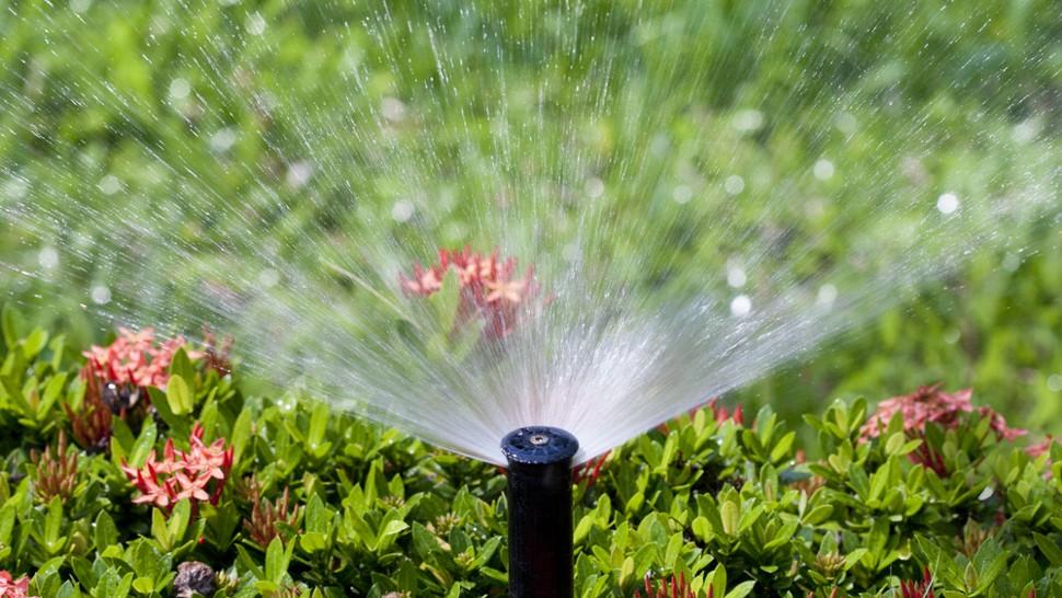 Cấu tạo hệ thống tưới phun mưa tự động
