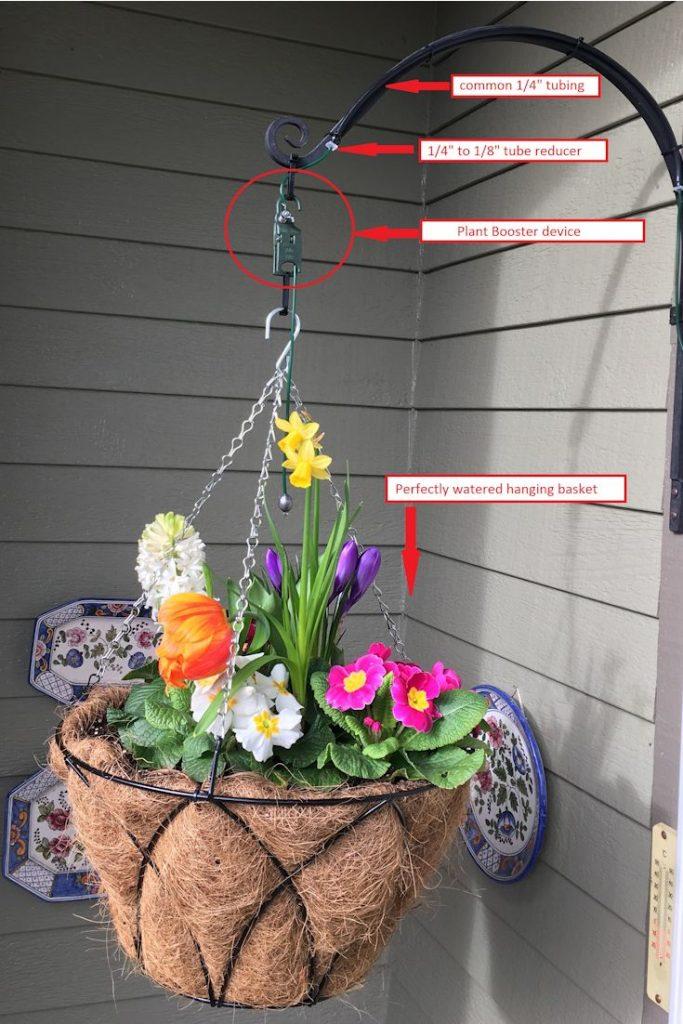 Hệ thống tưới nhỏ giọt cho chậu hoa treo