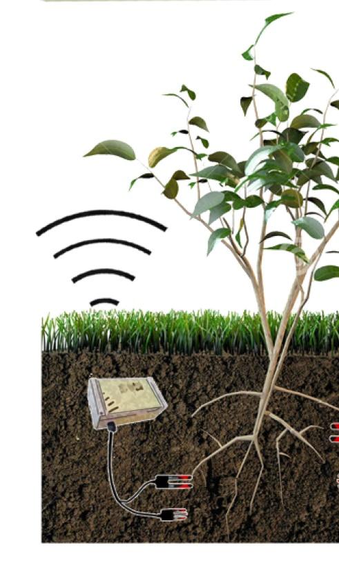 Cảm biến đo độ ẩm cũng dễ dàng kết nối với bộ điều khiển để xác định các biến đổi về độ ẩm trong không khí và đất.