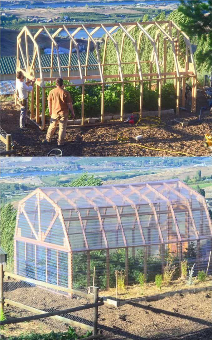Chi tiết các bước xây dựng mô hình nhà kính trồng rau xanh mát