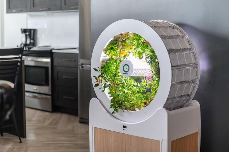 Một hệ thống làm vườn trồng rau sạch trong nhà có thể trồng tới 90 loại rau và trái cây cùng lúc.