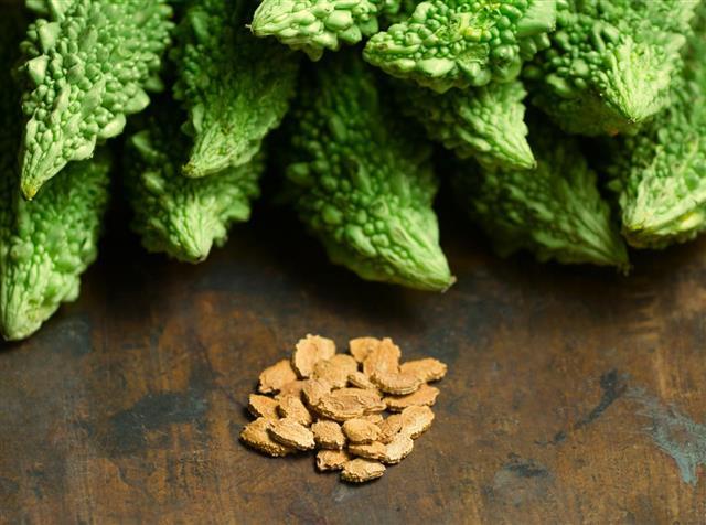 Ủ hạt trước khi gieo: pha nước ấm, 3 nước sôi- 2 nước lạnh, cho hạt vào ngâm 4-5 giờ, vớt hạt ra ủ hạt bằng khăn ẩm