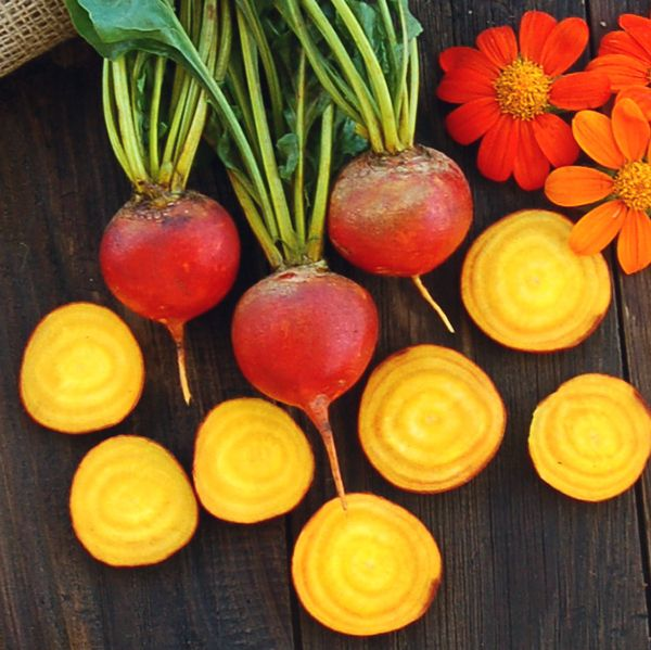 Hướng dẫn cách trồng củ cải vàng thay đổi khẩu vị